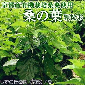 京都産 有機栽培 桑