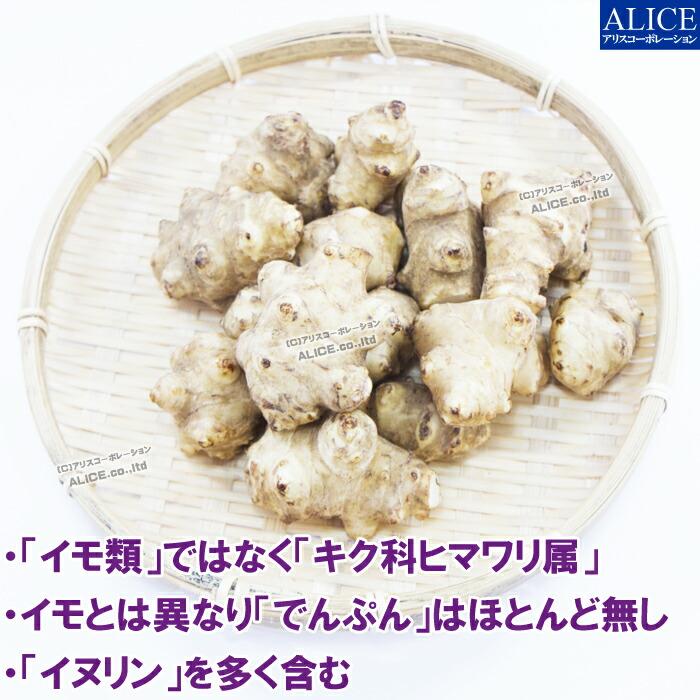 菊芋 キクイモ とは