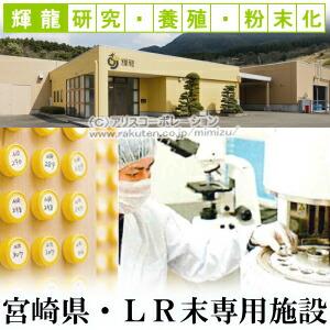 輝龍 LR末3 専用製造施設