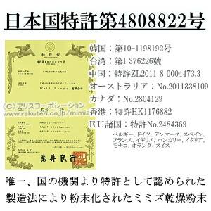 LR末III SK末 特許