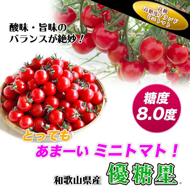 とっても甘いミニトマト 優糖星・ユウトウセイ・ゆうとうせい 和歌山産