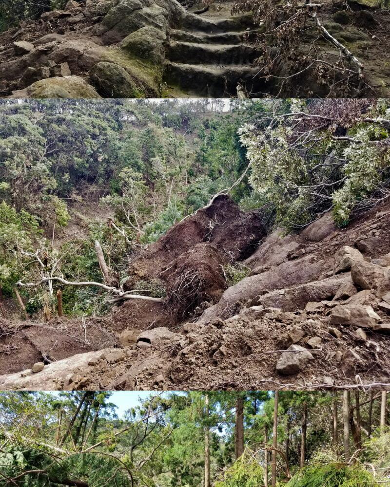 鋸山復興プロジェクト