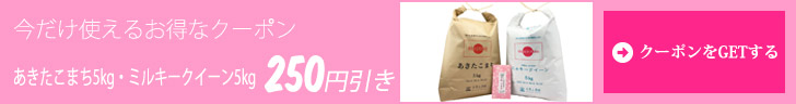 クーポン250円引き
