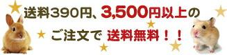 全国一律送料390円 3500円以上のご注文で送料無料