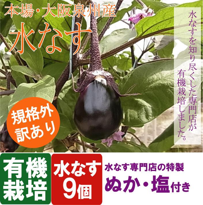 本場・大阪泉州産水なす、規格外訳あり