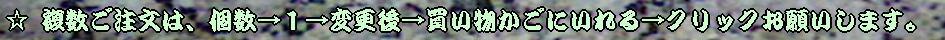 十和田石 御影石 大理石 玄昌石 乱形石 鉄平石 大谷石 石材タイルを1枚乱形石1束から通信販売 画像クリックしてください。ご利用ガイド