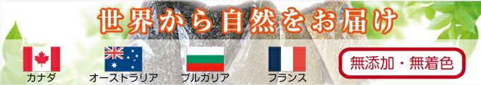 MIRAI-UPオリジナル シード
