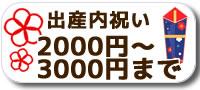 出産内祝い2000円〜3000円まで