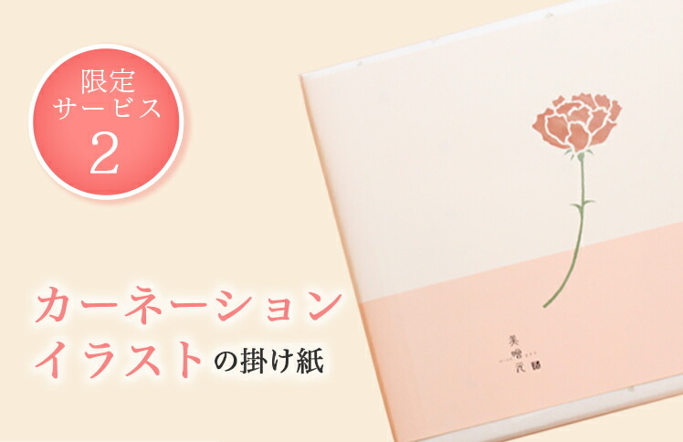 (2)カーネーションイラストの包装紙
