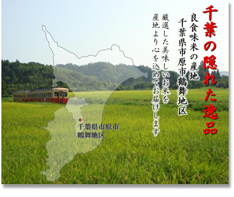 電車の走るのどかな田園風景