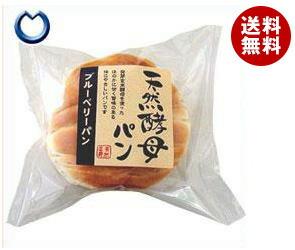 【送料無料】 天然酵母パン ブルーベリーパン 12個入 ※北海道・沖縄・離島は別途送料が必要。