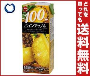 【送料無料】 毎日牛乳 毎日 100%パインアップル 200ml紙パック×24本入 ※北海道・沖縄・離島は別途送料が必要。
