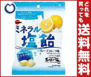 【送料無料】 ブルボン ミネラル塩飴 100g×10袋入 ※北海道・沖縄・離島は別途送料が必要。