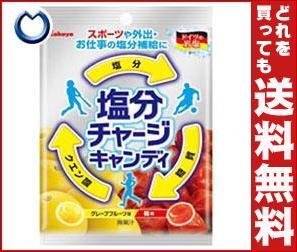 【送料無料】 カバヤ 塩分チャージキャンディ 110g×10袋入 ※北海道・沖縄・離島は別途送料が必要。