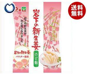 【送料無料】 パイン 岩下の新生姜のど飴 80g×10袋入 ※北海道・沖縄・離島は別途送料が必要。