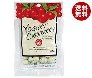 【送料無料】 共立食品 ヨーグルトクランベリー 46g×10袋入 ※北海道・沖縄・離島は別途送料が必要。