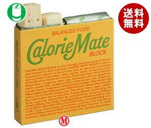 【送料無料】 大塚製薬 カロリーメイト ブロック フルーツ味 1箱(4本入)×30箱入