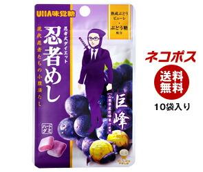 【全国送料無料】【ネコポス】 UHA味覚糖 忍者めし (ぶどう) 20g×10袋入
