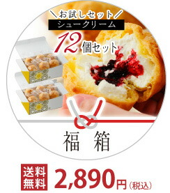 お試しセット シュークリーム12個セット 福箱 送料無料 2,890円(税込)