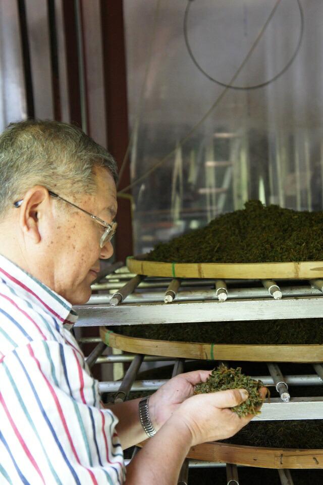 紅茶 和紅茶 国産紅茶 ふじえだ 静岡 お茶 麦茶のようにすっきりしていて飲みやすいお茶です