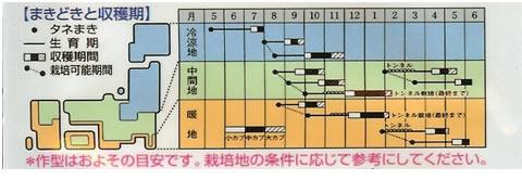 かぶ 種 スワン(4ml)
