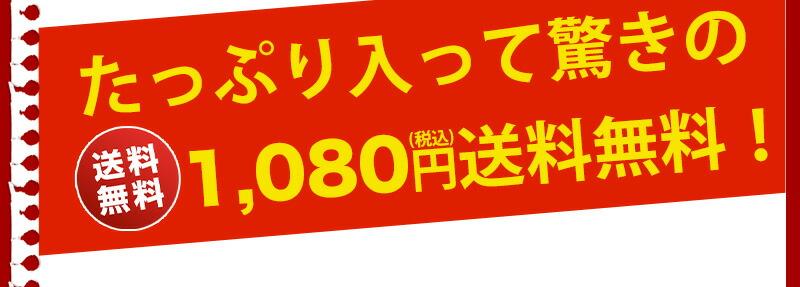1000円ポッキリ 送料無料 宮崎名産 炭火焼鳥