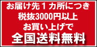 お届け先1カ所につき、税抜3000円以上お買い上げで全国送料無料