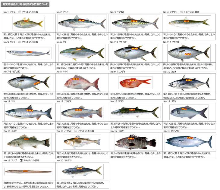 フィッシュアナライザ DFA100 20魚種