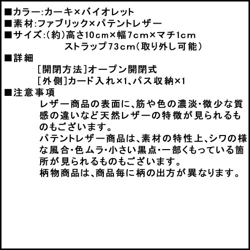coach_2