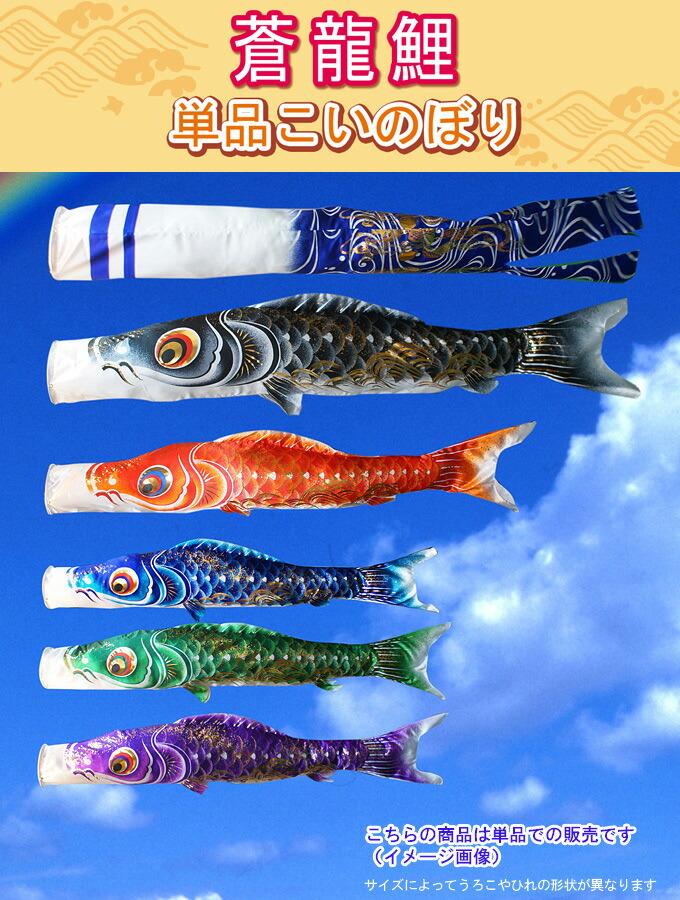 こいのぼり 単品鯉のぼり 蒼龍鯉