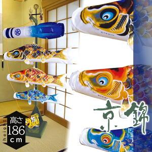 京錦 室内 鯉のぼり