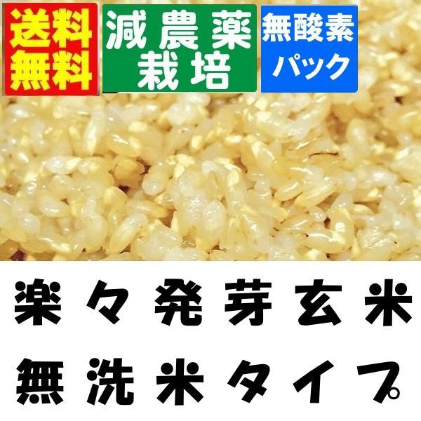 楽々発芽玄米