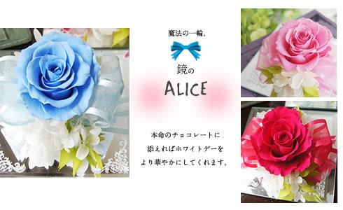鏡のアリス