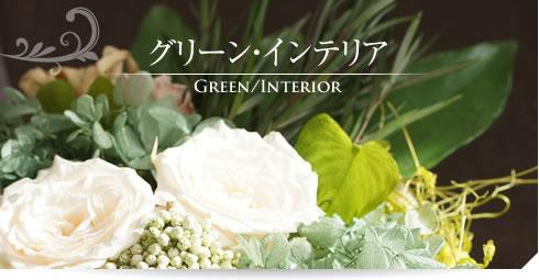 開店祝いや新築祝いお部屋のインテリアとしてグリーンインテリアが人気