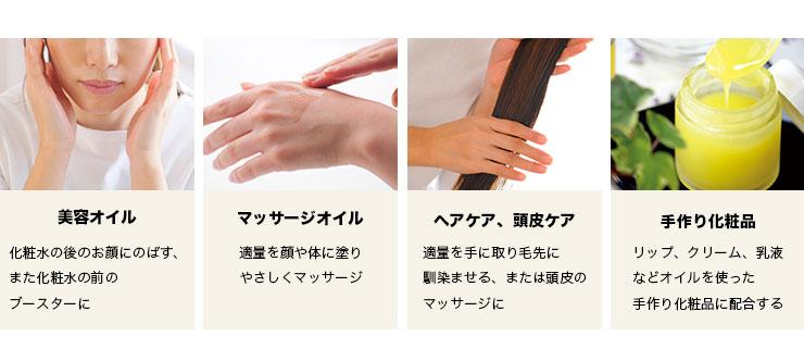ウチワサボテンオイル 美容オイル マッサージオイル ヘアケア 頭皮ケア 手作り化粧品