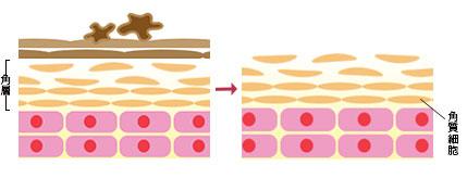 肌の汚れや余分な角質をオフ