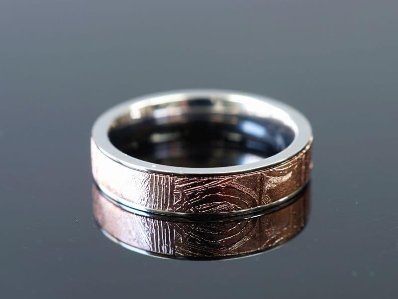ギベオン隕石 リング・指輪 (ギベオン+チタン)