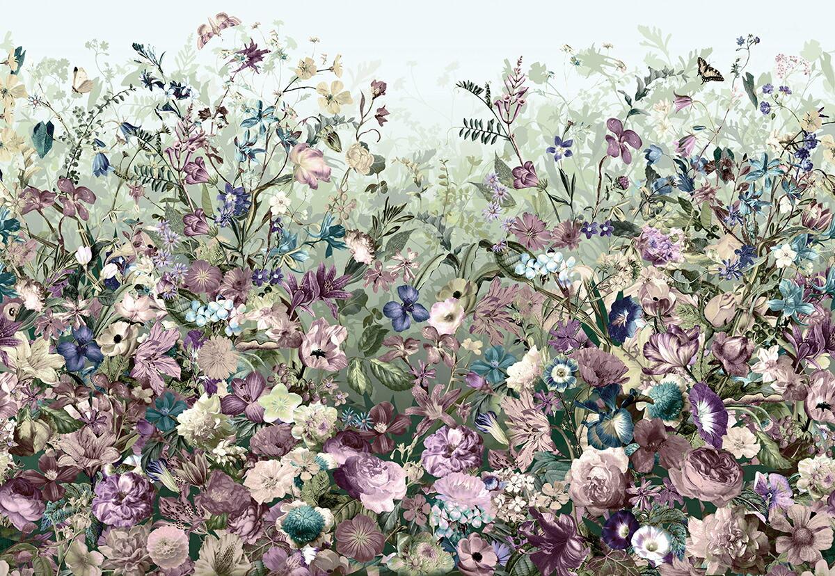ドイツ製インポート壁紙 サンシェード Xxl4 035 Botanica ボタニカ