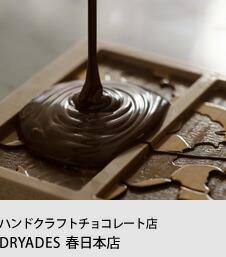 チョコレートショップ&ファクトリー DRYADES 春日本店