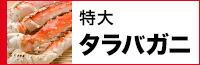 特大タラバガニ1kg(ボイルタイプ)タラバ蟹