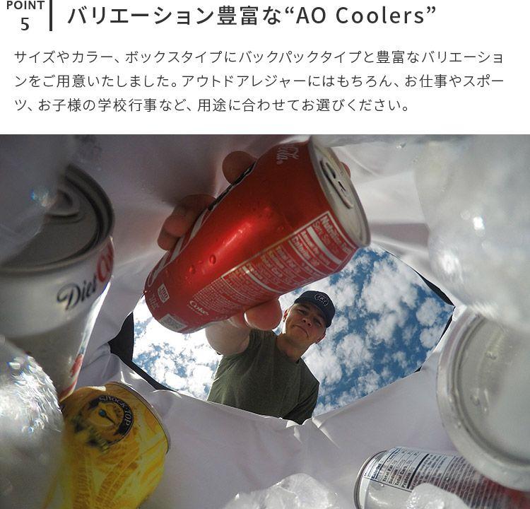 クーラーバッグ 36 AOパック キャンバス ソフトクーラー