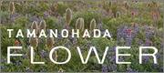 TAMANOHADA FLOWER(タマノハダフラワー)