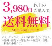 3,980円以上のご購入で送料無料!