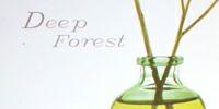 Deep Forest(ディープフォレスト) 〜深い森林〜