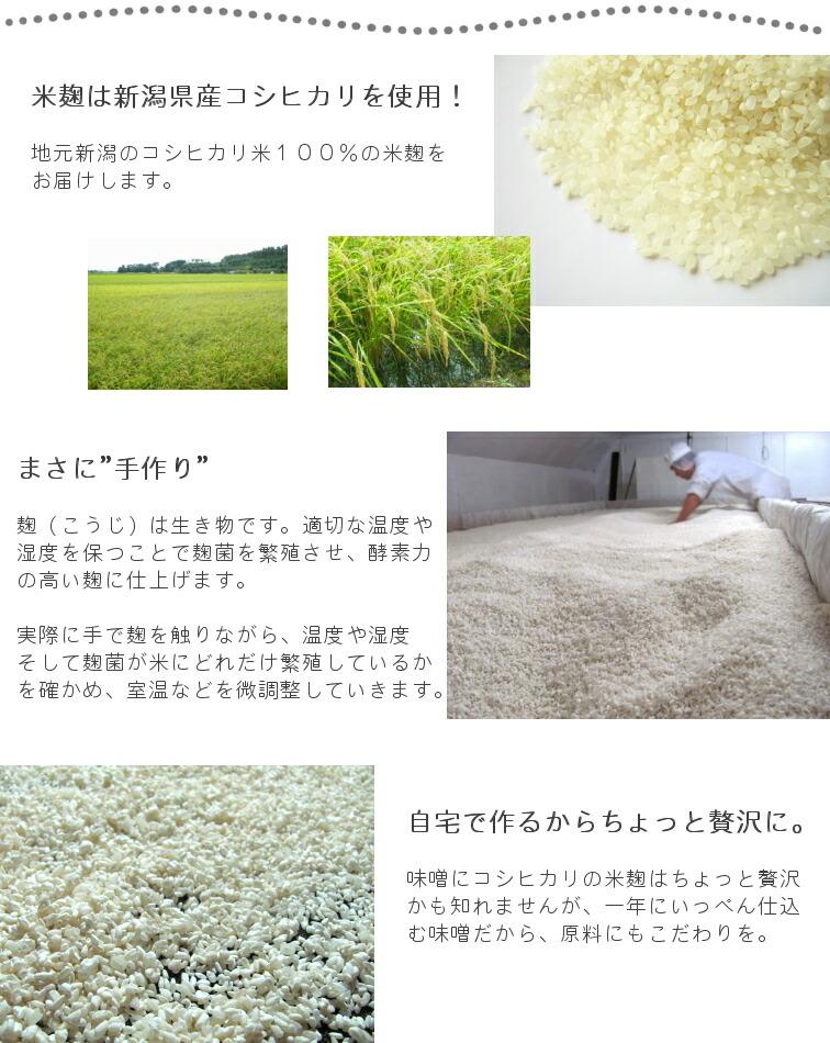 米麹について