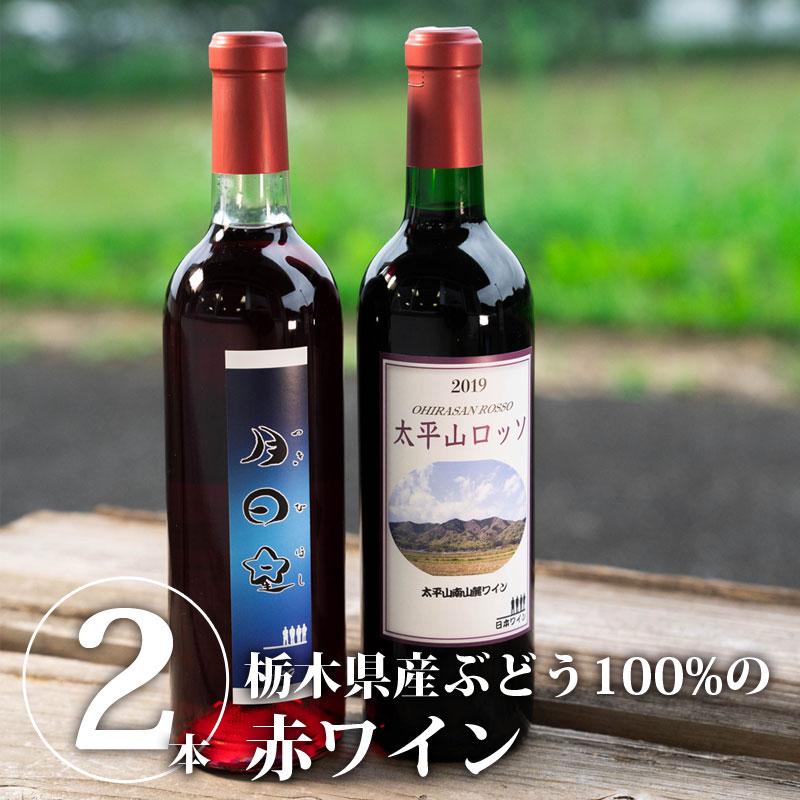 2019年地元産ぶどう100%の赤ワイン2本セット