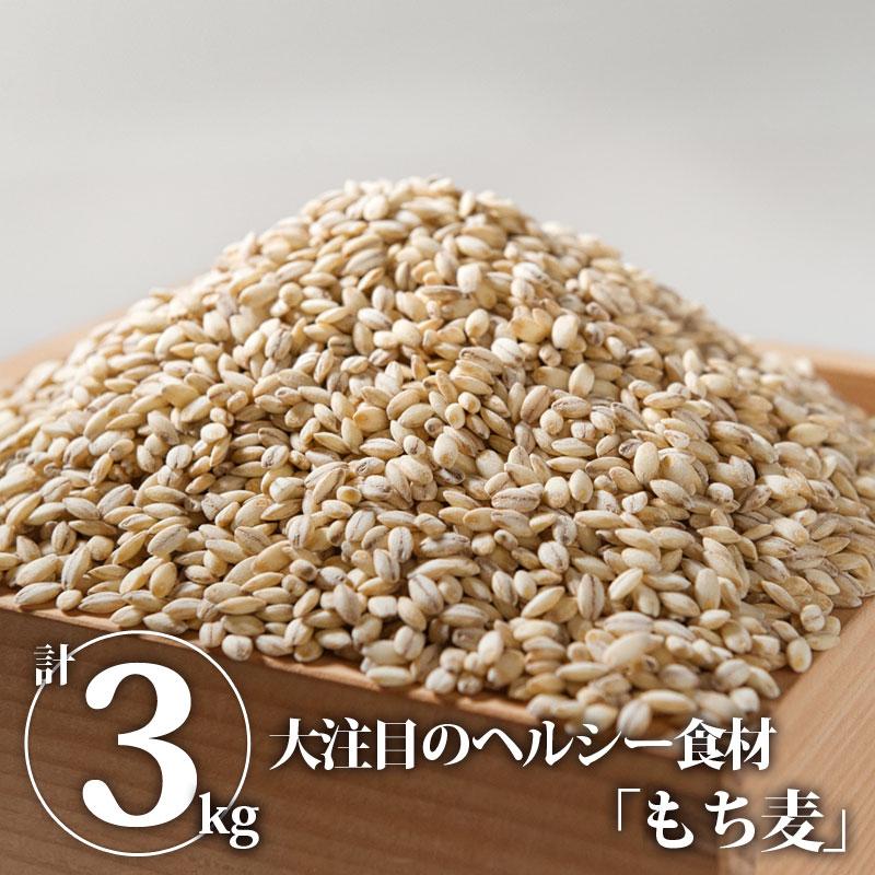 もち麦「もち絹香」