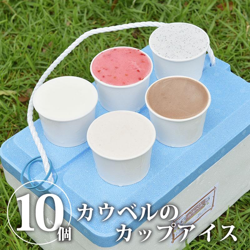 カウベルのカップアイス 10個詰め合わせ
