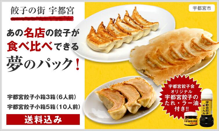 宇都宮餃子会 キャッチ