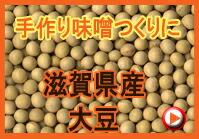 滋賀県産大豆